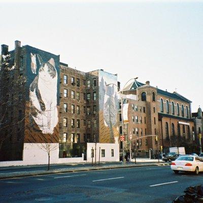 アムトラックでアメリカ一周旅行:New York [2]/ニューヨーク 後編:美術館や博物館めぐりも楽しめます